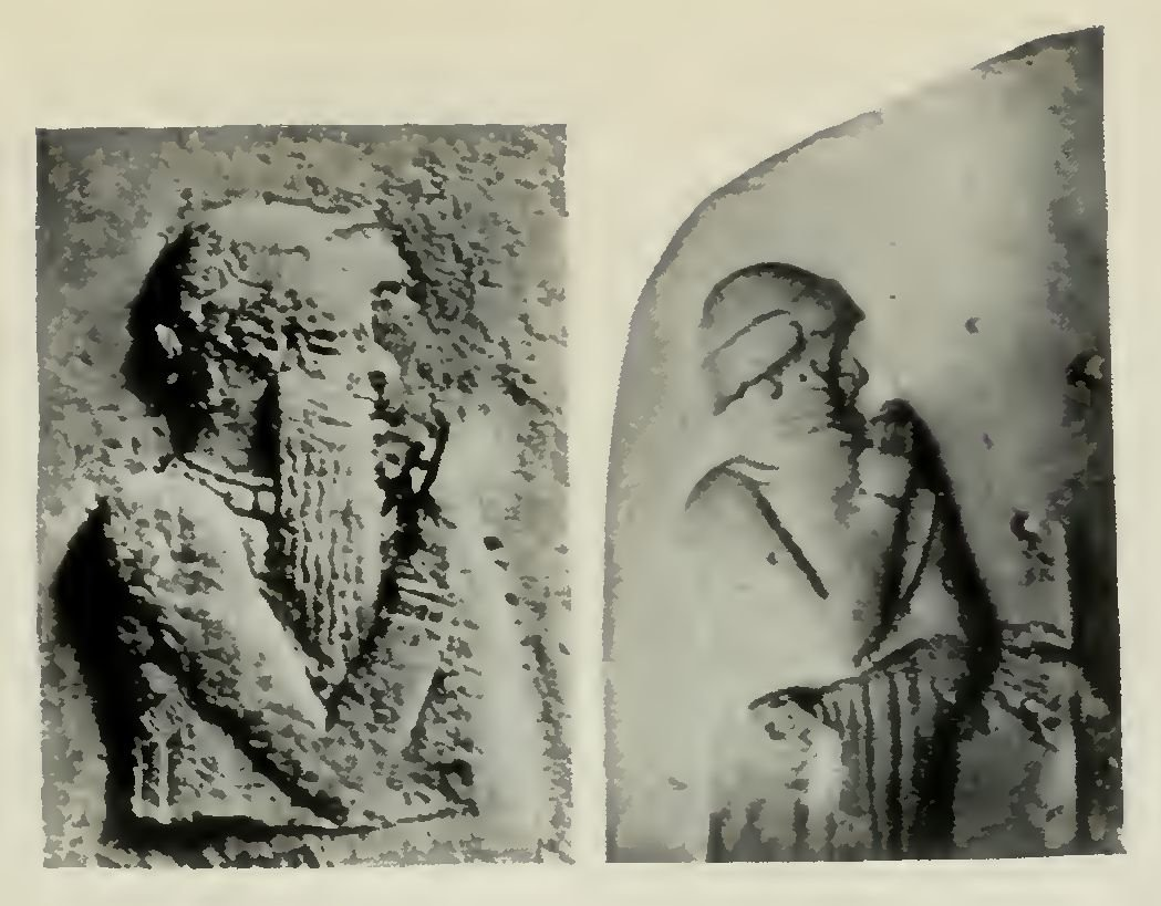 Semitic Types; Fig. 1. Two Portraits of Hammurapi, King of Babylonia (c. 1958-1916 B.C.)